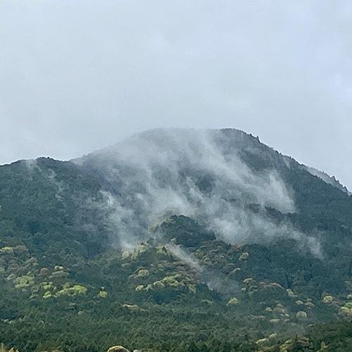 霧の写真2