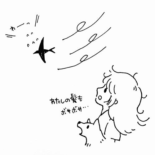 風にあおられるツバメ